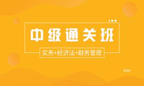 中级通关班(实务+经济法+财务管理)